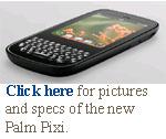 palm pixie