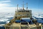 Arctic Fibre CS Peter Faber