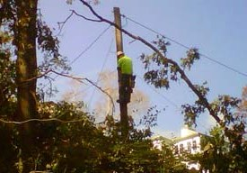 Verizon technician overhead wires
