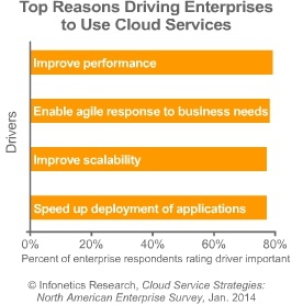 Infonetics hybrid cloud services 2013